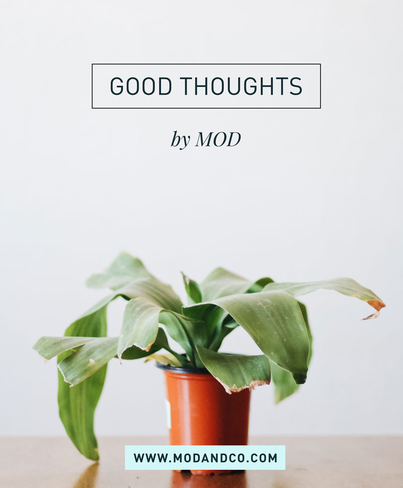 Good Thoughts | MOD - Doing Good by Design